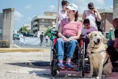 OpenWeekend ITOP - Pet Therapy (1a)