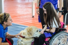 OpenWeekend ITOP - Pet Therapy (44)